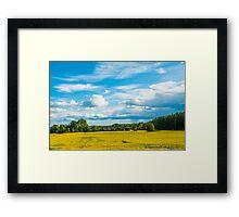 Rural Swedish Landscape Framed Print