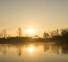 Golden Mist and Ripples - Enjoying One Fine Daybreak  by Georgia Mizuleva