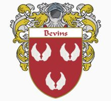 Bevins Coat of Arms/Family Crest by William Martin