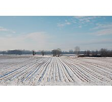 Snowy Field Photographic Print