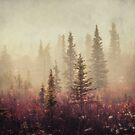 Wander in the Fog by Priska Wettstein