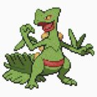 Sceptile is sofa king awesome by DuvanMuvan
