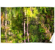 Fall reflections in the Harz National Park Poster
