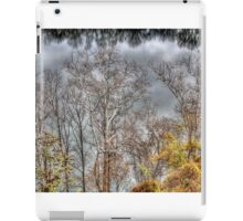 Riverside 1 iPad Case/Skin