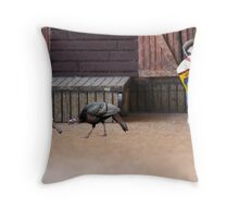 It's a trick…run!!!!  When he said 'turkey wraps', he wasn't getting coats for us!!!! Throw Pillow