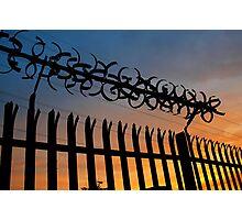 caged heat Photographic Print