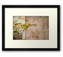 Wall flowers Framed Print