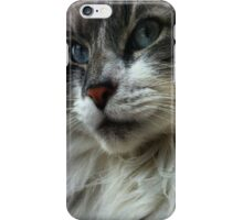 Come Hither Right Meow iPhone Case/Skin