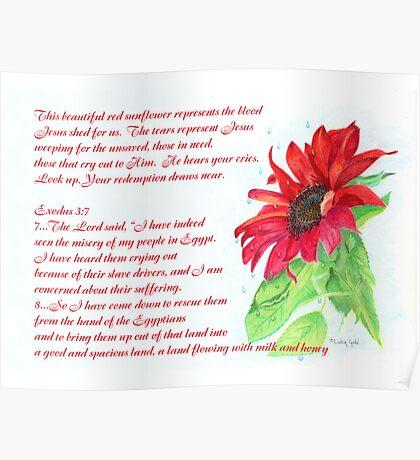 Jesus Wept Red Sunflower Poster