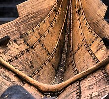 Seafearing Clinker At Roskilde (2) by Larry Lingard-Davis