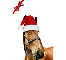 The Christmas Horse Photographic Print