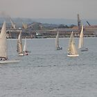 Twilight Sailing Practice. Geelong. Victoria. by Rita Blom