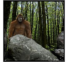 Oregon Sasquatch Photographic Print