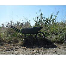 bush transportation Photographic Print