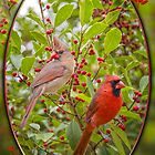 Cardinals in Holly by Bonnie T.  Barry