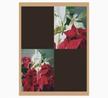 Mixed color Poinsettias 3 Blank Q3F0 One Piece - Short Sleeve