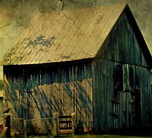 The Old Barn by Scott Mitchell