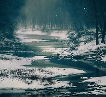 Frozen by Bendinglife
