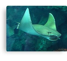 Flying Under Water Canvas Print