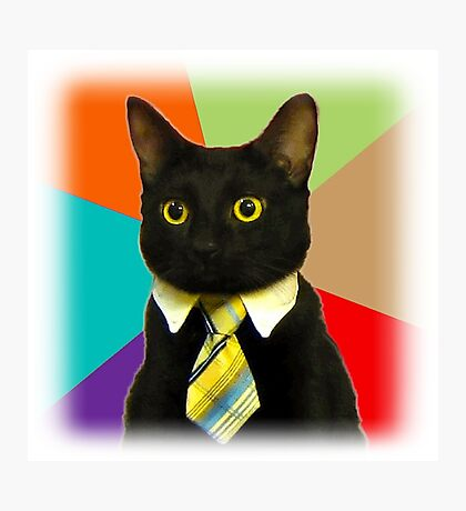 Business Cat Photographic Print