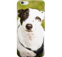 Deaf Rescue Dog *PROCEEDS TO CHARITY* iPhone Case/Skin