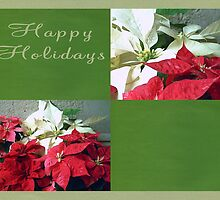 Mixed color Poinsettias 3 Happy Holidays Q5F1 by Christopher Johnson