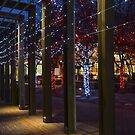 Holiday Magic inToronto, Ontario, Canada by Gerda Grice
