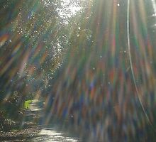 """""""Refraction of Light"""" by ozjules8"""