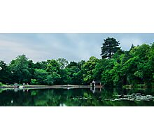 Buchan Country Park Photographic Print