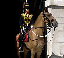 The King's Troop (woman horse guard) by benastrada