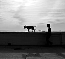 Walking the Dog @ Ocean Beach, San Francisco. by gkhmeow