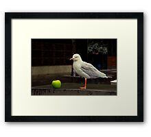 """""""The Apple and The Gull"""" Framed Print"""