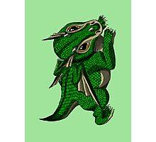 Emerald the Baby Dragon Photographic Print