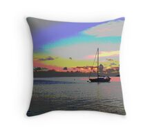 The Perfect View Throw Pillow