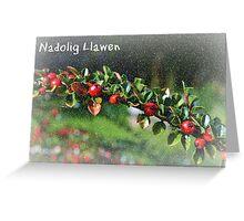 Nadolig Llawen - Cerdyn Nadolig Greeting Card