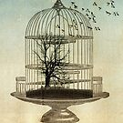 free as a bird by Vin  Zzep