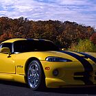 2011 Dodge Viper RT/10 by TeeMack
