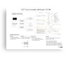 ELF101 (ARM) Canvas Print