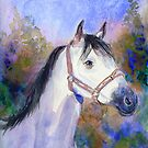 """Nina"" White mare on a crisp morning by COusley622"