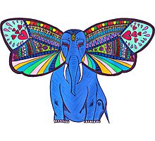 Elephant Butterfly  Photographic Print