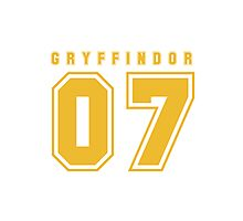 Gryffindor 07 Photographic Print