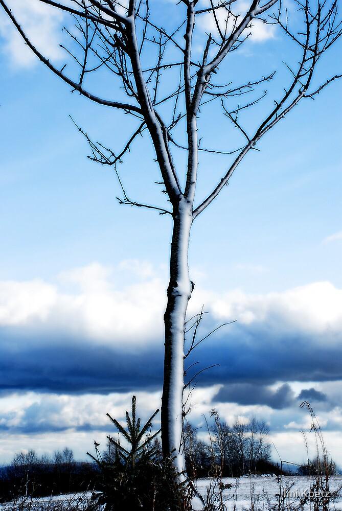 Snowy Tree by Imi Koetz
