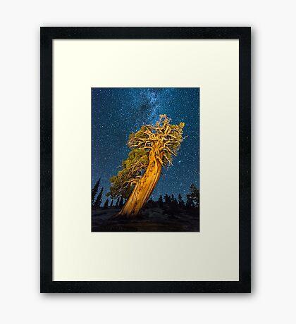 Olmsted Point Framed Print