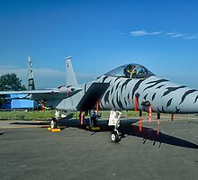 F-15C 84-021 in tiger stripes by Colin Smedley