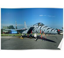 F-15C 84-021 in tiger stripes Poster