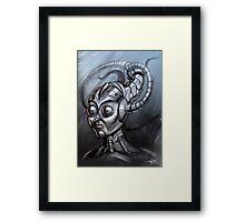 Sheborg Framed Print