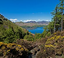 Derwentwater by Roger Green