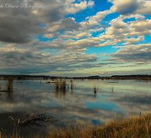 Nisqually National Wildlife Refuge by MermandaDawn