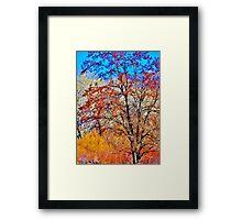 Colorfall Framed Print