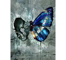Bonefly Photographic Print